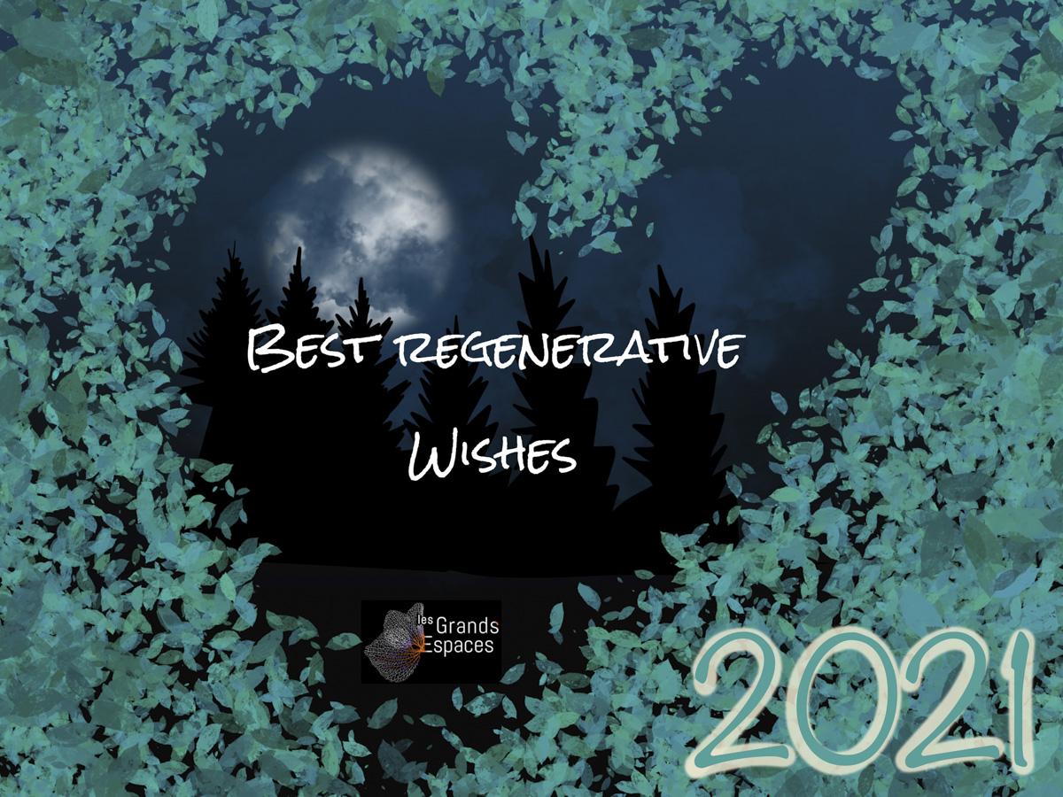 Que l'année 2021 soit régénérative !