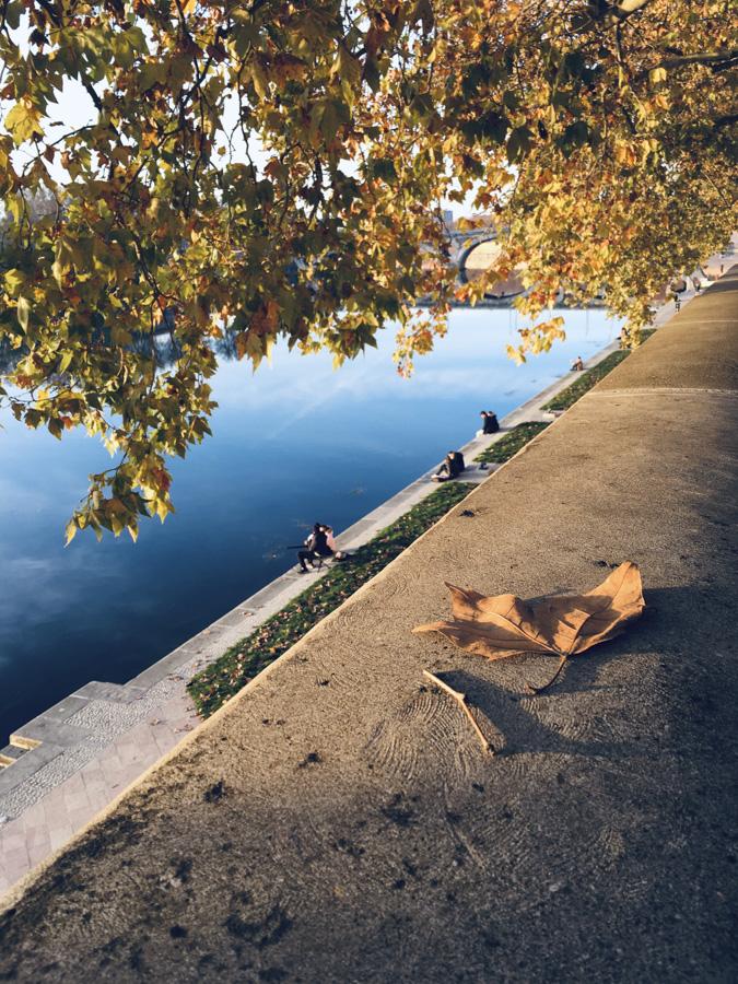 Les bords de Garonne confinés en automne